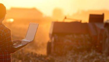 Las ventajas del comercio electrónico también han llegado al sector agrícola y cada vez son más los agricultores que se animan a vender sus productos online. Si todavía no te has decidido